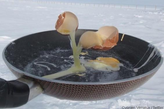 남극에서 계란을 깨면