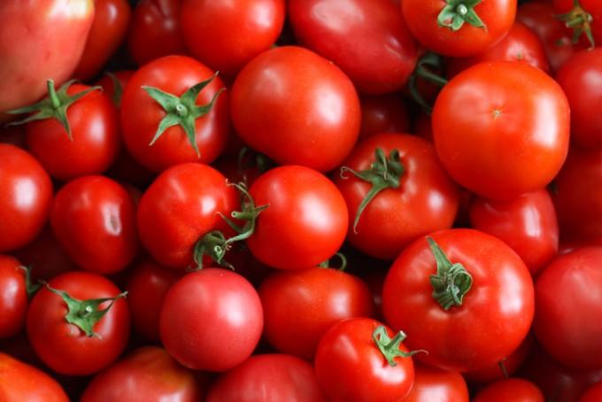 [강석기의 과학카페]토마토는 과일이 될 수 있을까?