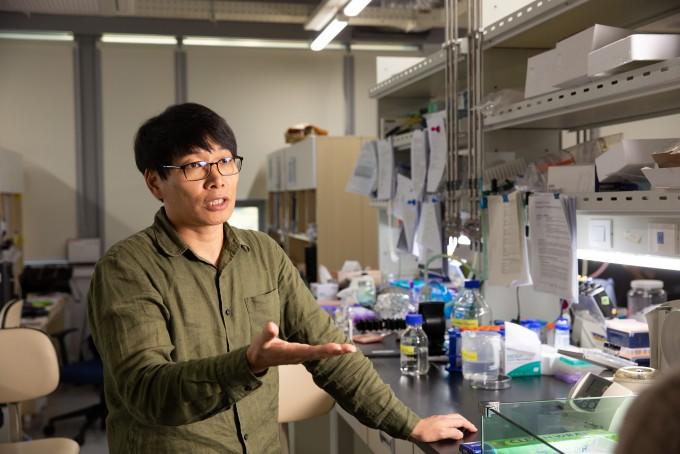 박태주 울산과학기술원 교수가 실험실에서 연골 형성 유전자에 대해 설명하고 있다. UNIST 제공.