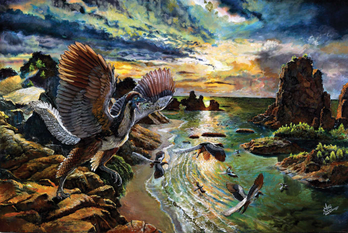 1990년대 초에 발견된 8번째 시조새 추정 화석을 재분석한 결과,  실제로 시조새임을 인정받게 됐다. 사진은 시조새 종으로 새로 명명된 알베르스도어페리(Archaeopteryx albersdoerferi)의 개념도다-Zhao Chuang 제공