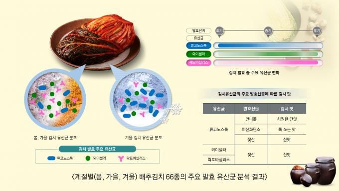 자료: 세계김치연구소