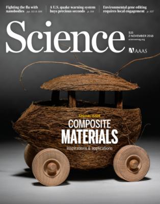 [표지로 읽는 과학] 자동차를 더욱 견고하게 만드는 자연산 복합소재