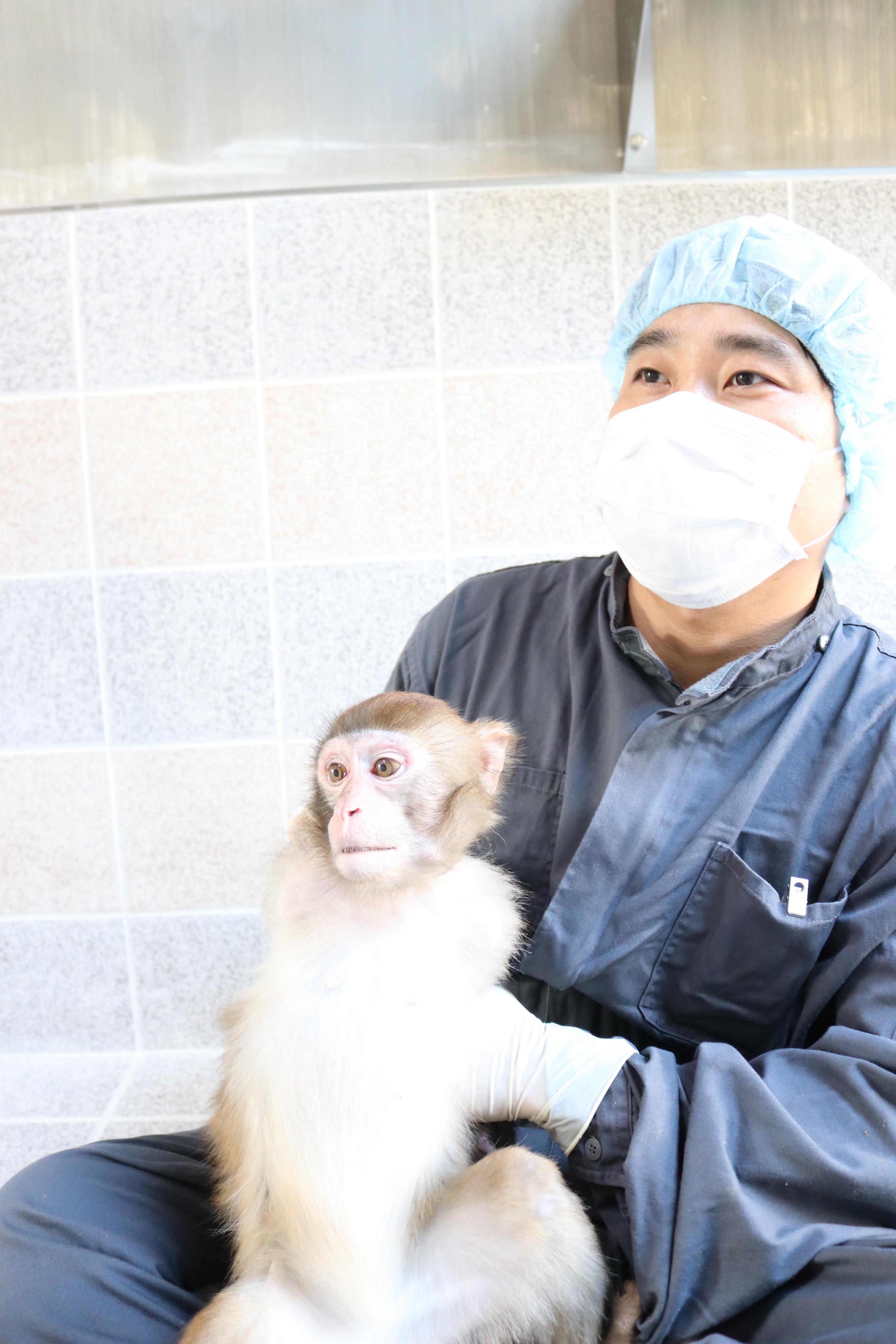 영장류자원지원센터 사육사가 붉은털원숭이를 안고 자세를 취하고 있다.