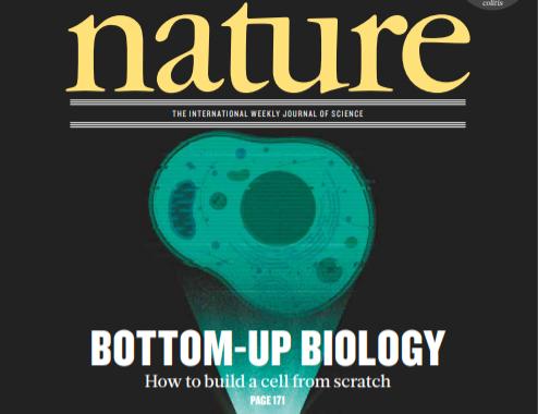 [표지로 읽는 과학] 분자에 주목하라 '보텀업 세포생물학'