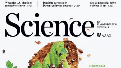 [표지로 읽는 과학] 완벽하고 건강한 식단을 찾아서