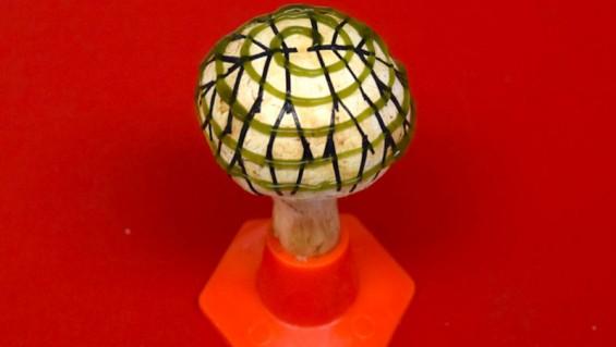 박테리아로 전기 생산하는 '바이오닉 버섯'