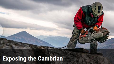 [표지로 읽는 과학]생명체가 처음 등장한 캄브리아기를 탐험하다