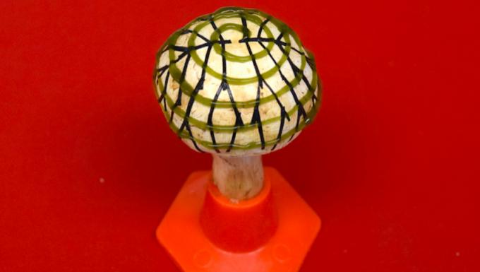 마누 마누어 미국 스티븐스공대 교수팀이 개발한 바이오닉 버섯. 나선형으로 배열한 초록색 물질이 남세균이다. Sudeep Joshi, Stevens Institute of Technology 제공