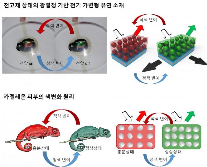 카멜레온 피부의 색변화 원리를 모사한 '전기 가변형 유연소재'의 원리. 서강대 제공.