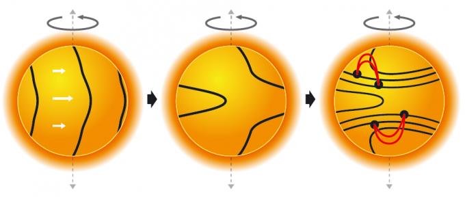기체로된 태양이 회전하면 극지보다 적도에서 자전 속도가 더 빠르다. 이런 속도 차이로 내부 자지장이 휘어져 쌓이는 곳이 생기고 이 자기장이 태양 표면에 노출되 주변보다 온도가 낮은 영역인 흑점이 된다-과학동아 제공