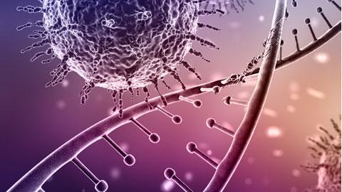 네안데르탈인에게 물려받은 '바이러스 저항 유전자'