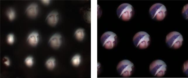 KAIST 연구진이 개발한 초박형 디지털 카메라를 통해 얻은 영상(왼쪽)과 제노스 페키의 시각기관을 통해 얻은 영상(오른쪽). KAIST 제공.