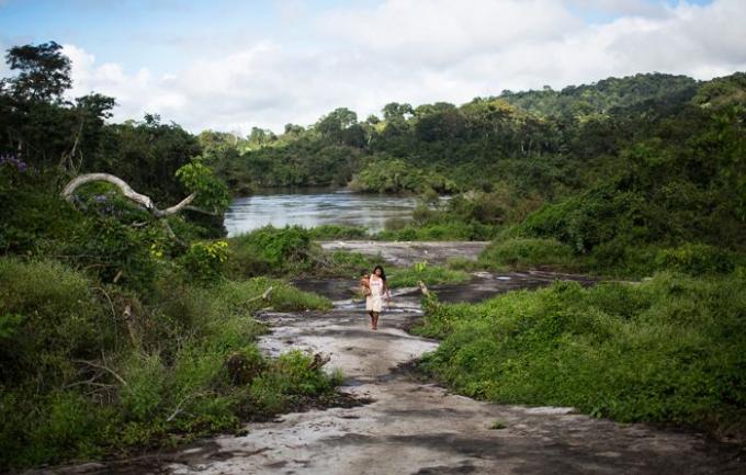 브라질의 아마존 숲 을 지나 흐르는 카테테강 주변을 걷고있는 여성의 모습이다-Taylor Weidman 제공