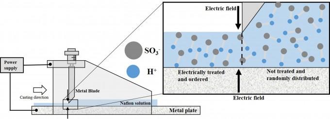 광주과학기술원 연구진은 배터리 내부에 설치되는 '나피온막'에 전기를 내부 구조를 정렬시키는데 성공했다 광주과학기술원 제공.