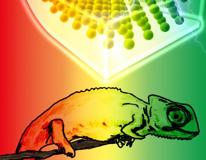 서강대 연구진은 (그림1)카멜레온 피부의 색변화 원리를 모사한 전기 가변형 유연소재를 개발했다. 재료분야 학술지 어드밴스드 옵티컬 머티리얼스에 게재될 표지논문 사진의 일부분. 서강대 제공.