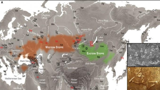 연구팀의 연구 지역(녹색)이 보인다. 붉은색 표시 지역이 서쪽 스텝 목축민의 거주지다. 두 지역을 가르는 것은 알타이 산맥이다. -사진 제공 PNAS