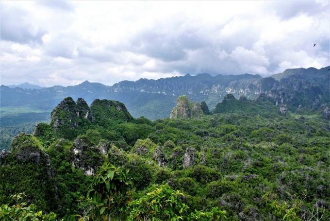 이번에 가장 오래된 동굴벽화가 발견된 보르네오 섬의 동 칼리만탄 지역. -사진 제공 Pindi Setiawan