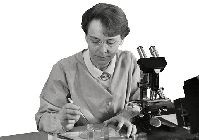 미국 콜드스프링하버 연구소의 연구실에서 바버라 매클린톡이 연구 중이다. 그는 꾸준히 훌륭한 연구를 발표했지만, 여성을 교수로 뽑지 않던 당시 미국 대학의 관행 때문에 여러 곳을 전전하며 연구를 이어나가야 했다. - Smithsonian Institution(W) 제공