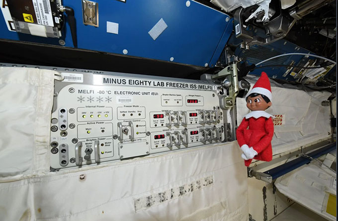 ISS의 냉동고인 MELFI 옆에 있는 엘프. 앤 맥클레인