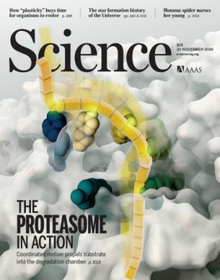 [표지로 읽는 과학]단백질 분해하는 몸속 분자기계
