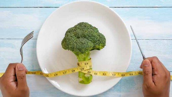 [강석기의 과학카페] 다이어트도 발상의 전환이 필요한 때