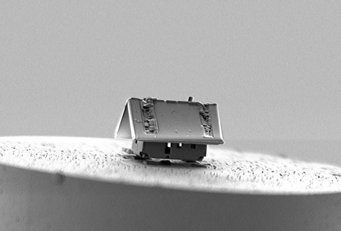 화성 향한 전기차부터 마지막 북부흰코뿔소의 최후까지…올해의 과학 이미지