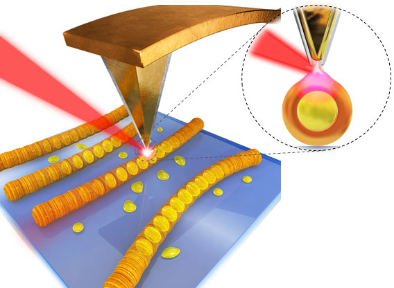 광유도력 현미경(PiFM)의 측정 원리 모식도. -사진 제공 한국표준과학연구원