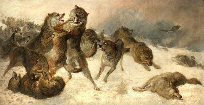 조지 고다드 작. '존재를 위한 투쟁', 늑대 싸움. 위키피디아 제공