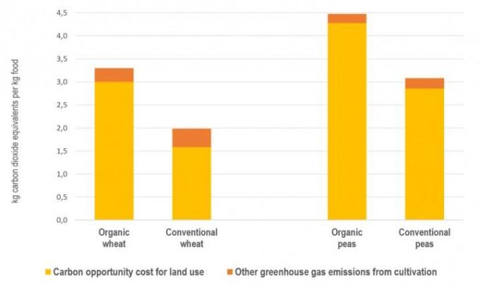스웨덴의 작물 수확 통계를 분석한 결과 밀(wheat)과 완두콩(peas)에서 유기농 농법을 쓴 경우(왼쪽 막대) 작물을 기르는 과정에서 나오는 탄소배출량(주황색)은 적었지만 탄소 기회비용을 고려한 단위 작물량 당 탄소배출량은 더 높았다. -스테판 비르세니우스 제공