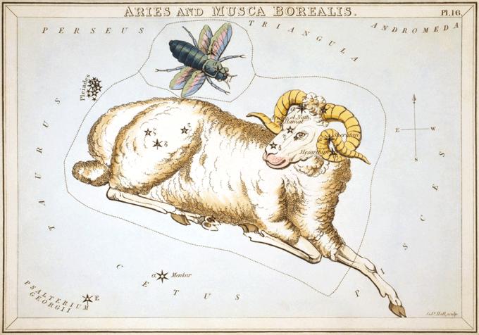 공식적인 별자리가 정해지면서, 88개에 포함되지 않은 여러 별자리가 사라지게 되었다. 사라진 별자리 중 하나인 '북쪽파리자리'의 모습. Sidney Hall(W) 제공