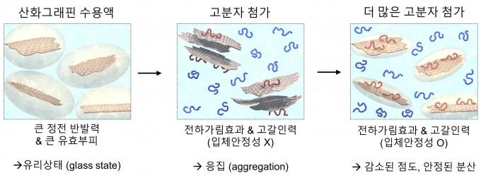 고분자 농도 변화에 따른 산화 그래핀의 유효부피(필요한 공간 크기)와 분산을 비교했다. 고분자(기사에서 고양이로 비유)를 넣으면 서로 밀어내던 산화 그래핀도 어느 정도 가까이에 서로 존재할 수 있다는 게 이번 발견의 핵심이다. -사진 제공 UNIST
