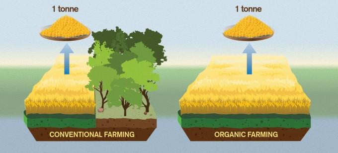 미국 프린스턴대 티모시 서칭어 연구교수는 유기농법이 농작물을 재배하는 데 많은 땅을 쓰기 때문에 기후변화에 악영향을 준다는 연구결과를 이달 12일 국제학술지 '네이처'에 실었다. -옌 스트란키비스트 제공