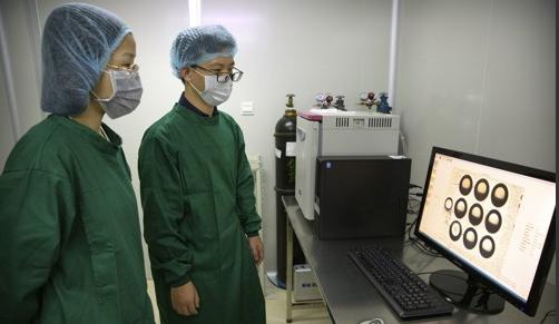 (2018.10.9) 작년 10월 8일 허젠쿠이 연구진의 일원이 실험실의 컴퓨터에서 배아 이미지를 보고 있다. AP/연합뉴스