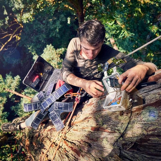 숲의 소리를 녹음해서 생물 다양성을 측정하는 기술이 환경을 보전하는데 도움이 될 수 있다는 주장이 나왔다. 나무 꼭대기에 녹음장치를 설치하고 있는 모습. -벤 본 윙 제공