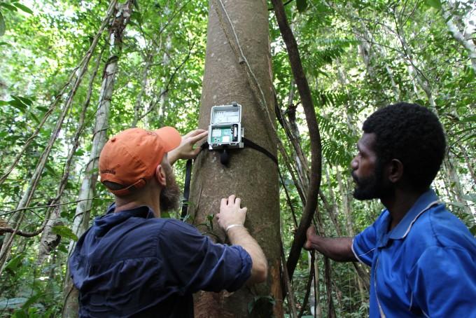 오세아니아 파푸아뉴기니 숲에 설치된 생물음향학 장치가 숲의 소리를 모으고 있다. -저스틴 호쉬어 제공