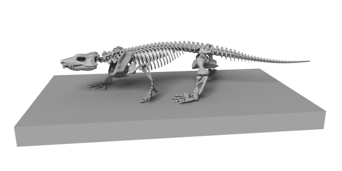 도마뱀과 같은 네발 달린 동물의 초기 조상으로 알려진 오로베이츠 팝스티를 화석에 근거해 복원한 모습니다,-독일 홈볼트대 제공