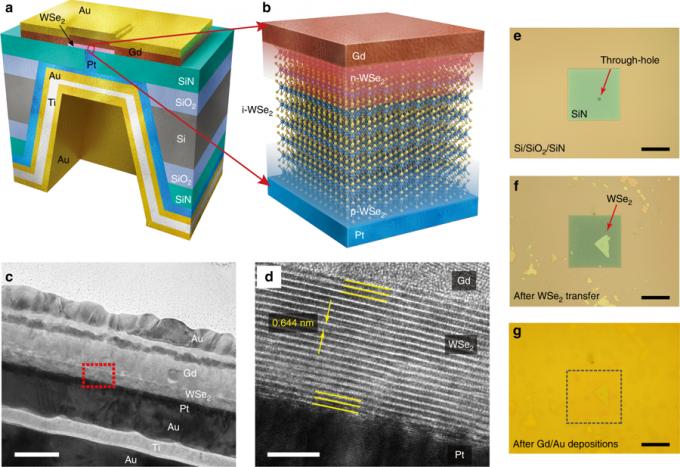 연구팀이 개발한 수직형 다이오드의 개념도(a,b). c와 d는 실제 전자현미경 사진이다. -사진 제공 네이처 커뮤니케이션스