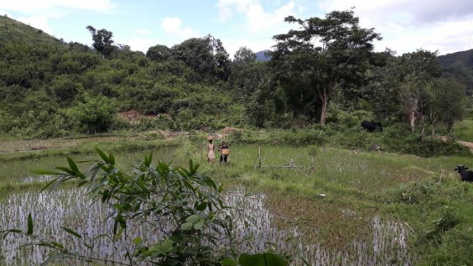 국립공원 인근에서 새참을 나르는 말라가시인. 마다가스카르 생물다양성의 보존과 지역 주민의 삶의 질 개선은 어느 하나도 소홀히 할 수 없는 중요한 과제다. 박한선 제공