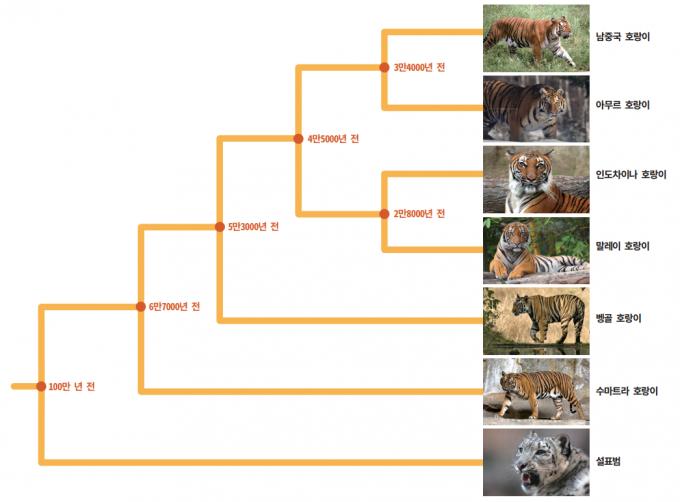 자료 : Current Biology / 사진 : 게티이미지뱅크, 위키피디아