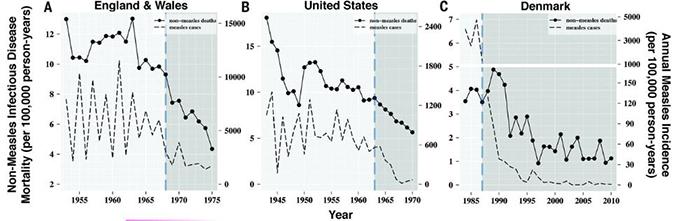 홍역을 앓고 나면 면역 기억상실이라는 현상 때문에 2~3년은 감염에 취약한 상태가 돼 사망 위험성이 높아진다. 의료인프라가 갖춰진 서구에서조차 홍역백신이 도입된 이후(회색 영역) 홍역으로 인한 사망자(점선)가 크게 줄었을 뿐 아니라 홍역 이외의 감염병으로 인한 사망자(실선)도 절반 수준으로 줄었음을 알 수 있다. '사이언스' 제공