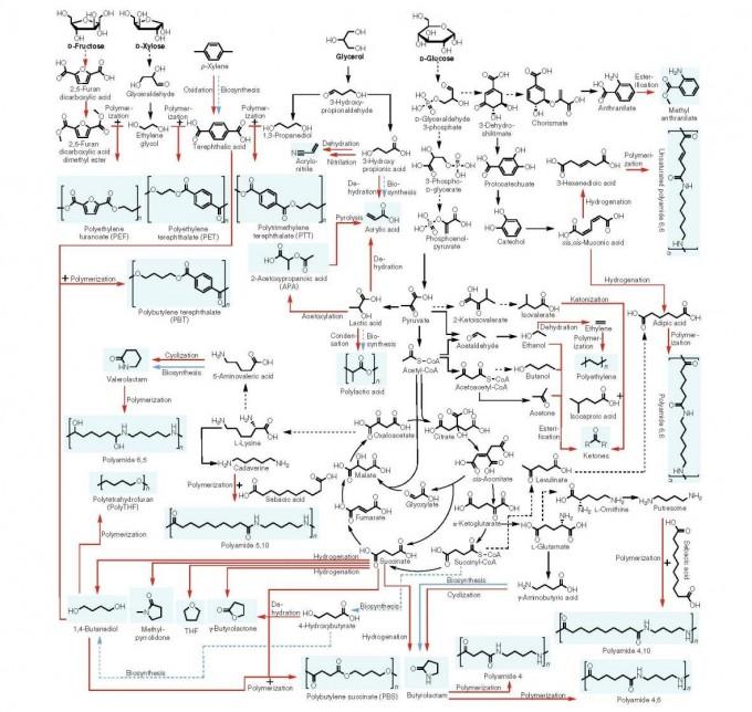 이상엽 한국과학기술원(KAIST) 생명화학공학과 특훈교수 연구팀이 제작한 바이오 기반 화학물질 합성 지도. -과학기술정보통신부 제공