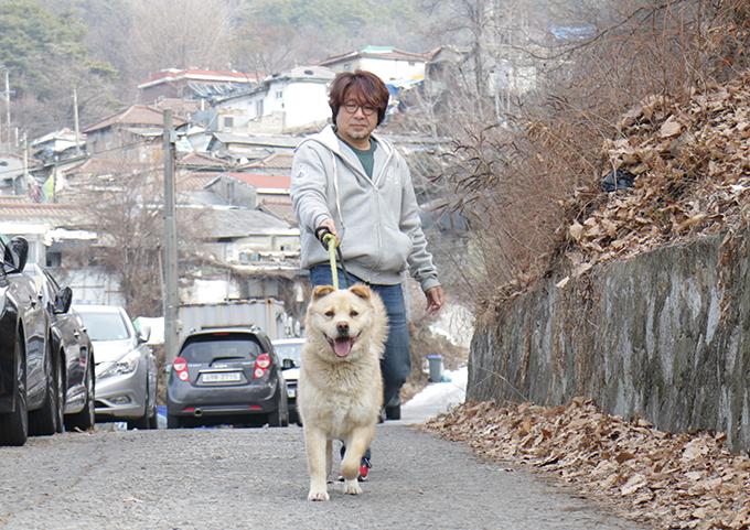 '104동행'은 서울 백사마을의 유기견을 구조할 목적으로 만든 시민단체로, 안락사를 시키지 않는 사설보호소의 도움을 받아 입양처를 구할 때까지 유기견을 돌본다. 사진은 104동행이 유기견을 산책시키는 모습. 이다솔 기자