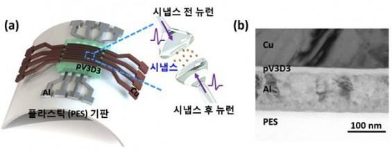 KAIST 연구진, 뉴로모픽 칩 시냅스 구현