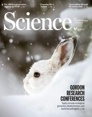 [표지로 읽는 과학]동일한 생존전략 택한 세 지역의 토끼들