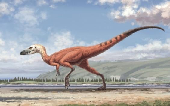 경남 진주에서 피부 자국까지 완벽한 공룡 발자국 화석 세계 첫 발견