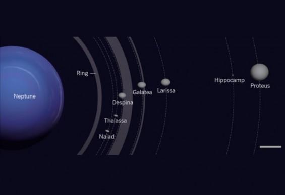 """해왕성 14번째 초미니 위성 발견 """"40억 년 전 충돌로 형성"""""""