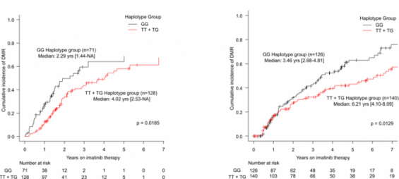 만성골수성백혈병 재발 예측하는 바이오마커 찾았다