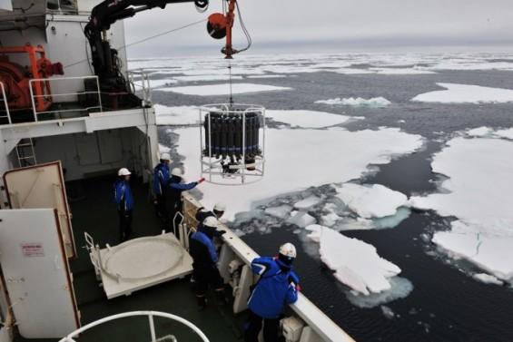 남극 해양 탄소순환, 미생물에 달렸다