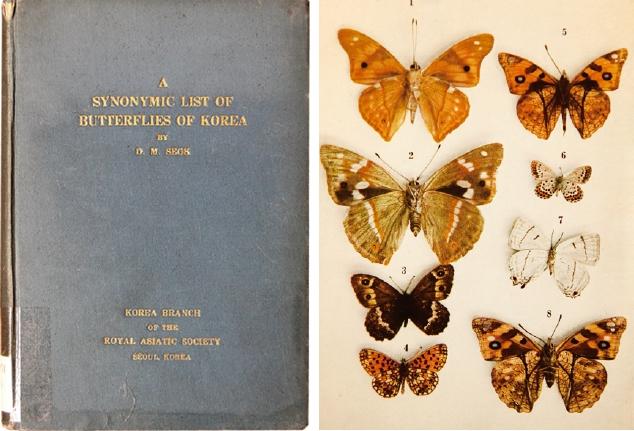 석주명이 1939년 발간한 ′A Synonymic List of Butterfl ies of Korea(조선산 접류 총목록)′. 이 책은 일제강점기 조선 과학자가 영문으로 집필한 유일한 책이다. 국회도서관 제공