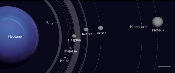 해왕성의 내부 위성들. 해왕성 제1 위성 ′트리톤′과 해왕성 사이에는 작은 위성이 있다. 이번에 ′히포캄프′라는 지름 34km의 초소형 위성이 새로 추가됐고 형성 과정도 밝혀졌다. -사진 제공 네이처